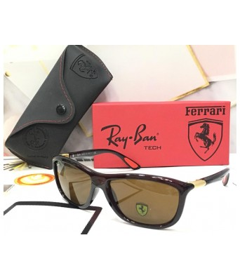 crazy new ferarri brown sunglasses