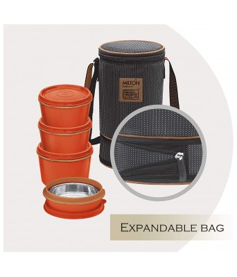 Milton Flexi Insulated Inner Stainless Steel Lunch Box Set, 4-Pieces, Brown