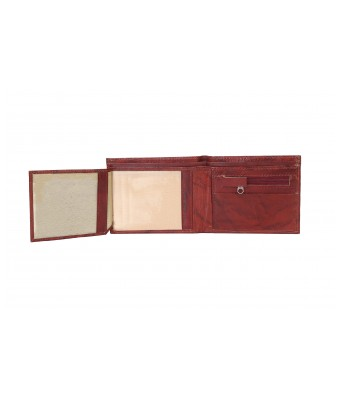 Lisova Brown Solid Genuine Leather Two Fold Wallet
