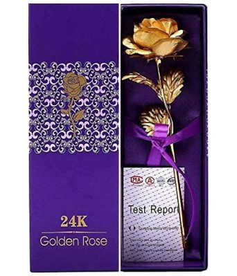 Hyper Take 24K Gold Plated Red Rose with Gift Box - Best Gift for Loved One, Special for Valentine Day, Father Day, Anniversary & Birthday Gift (Golden)